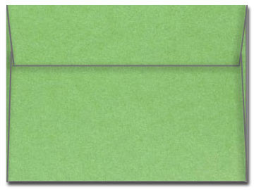 5 x 7 Envelope - Stardream Fairway