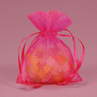 Shop all Shimmer Sheer Organza Favor Bags