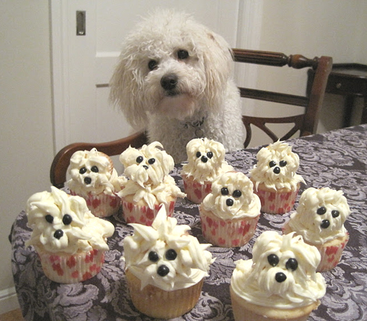 These Pupcakes are so cute!