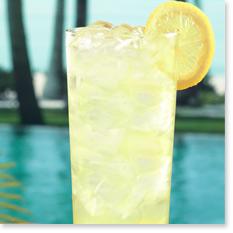 Citrus Ginger Fizz Cocktails