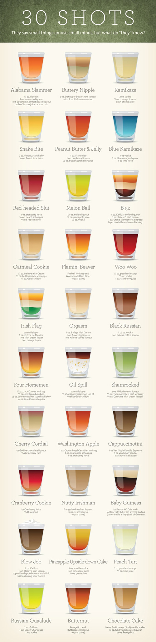 30 Shot Recipes