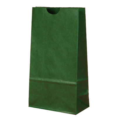 Green Lunch Bags for Holiday Party Favor Bags
