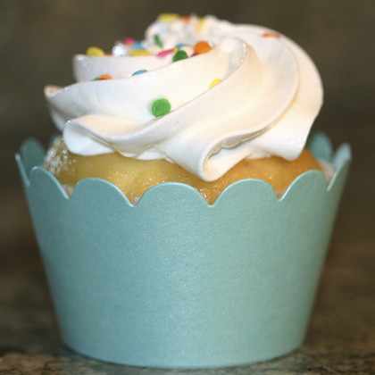 Shimmery Turquoise Cupcake Wrappers