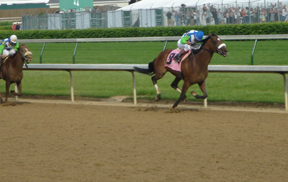 Barbaro wins the Kentucky Derby