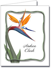 Note Cards: Bird of Paradise