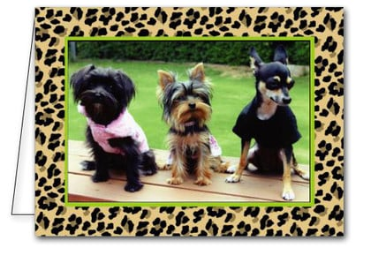 Classic Leopard Holiday Christmas Photo Holder Cards*