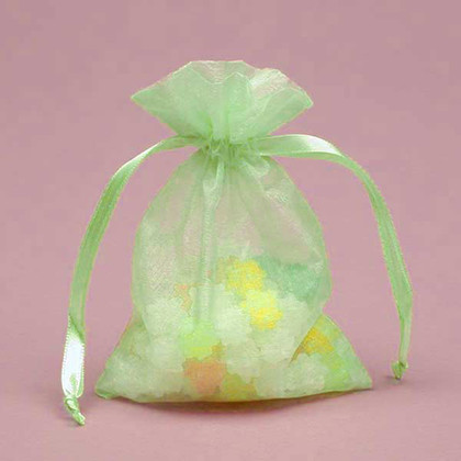 Shimmer Mint Organza Bag
