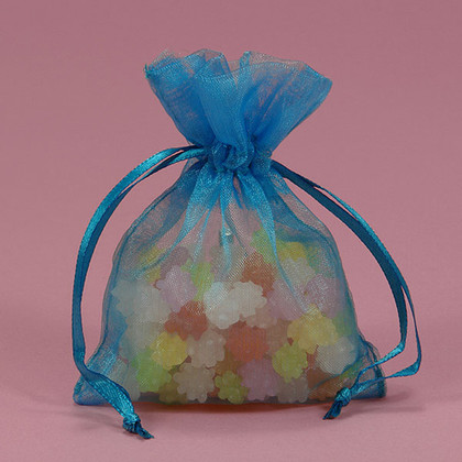 Shimmer Turquoise Organza Bag