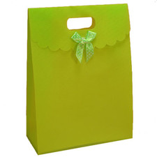 Lime Tab Top Favor Box Bag